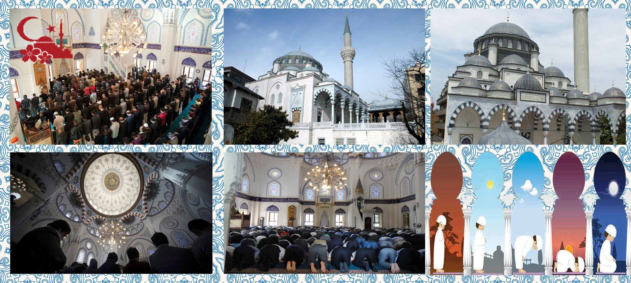 One Stop Transfer: Tokyo City to Tokyo Camii (Mosque)