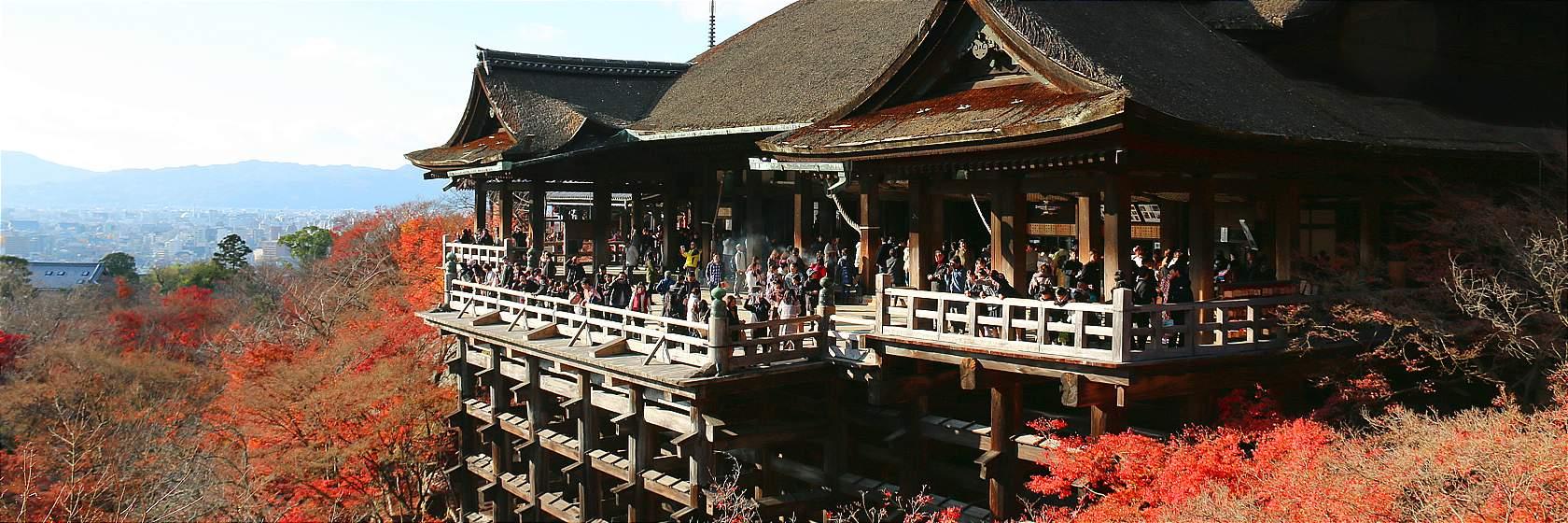 Optional SIC [From Osaka] (1) 1-Day Nara & Kyoto Bus Tour (Round trip from Umeda, Osaka)
