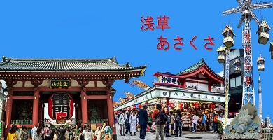 Tokyo Afternoon Tour <TA> [Alinobaby]