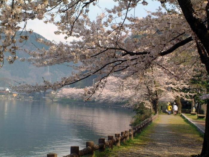 Otsu City to Kyoto City Shared Transfer ( Cherry Tomato )