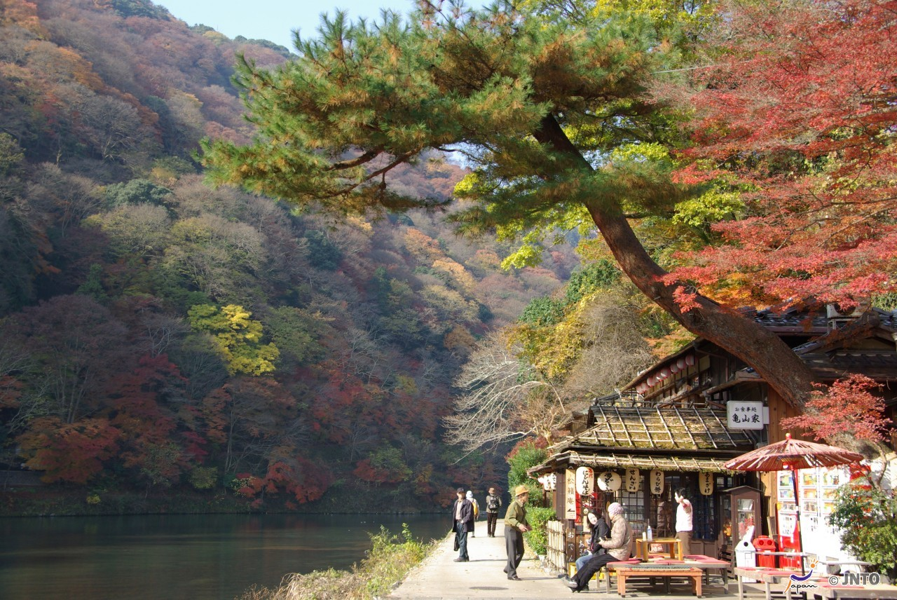 7-Day Japan Combination Package [B]