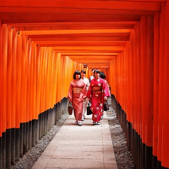 (1) Fushimi Inari Taisha Shrine and Sake Tasting Tour   (2) Real kyoto Back Street Guided Cycling Tour