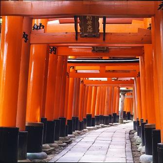 1-Day Express Kyoto