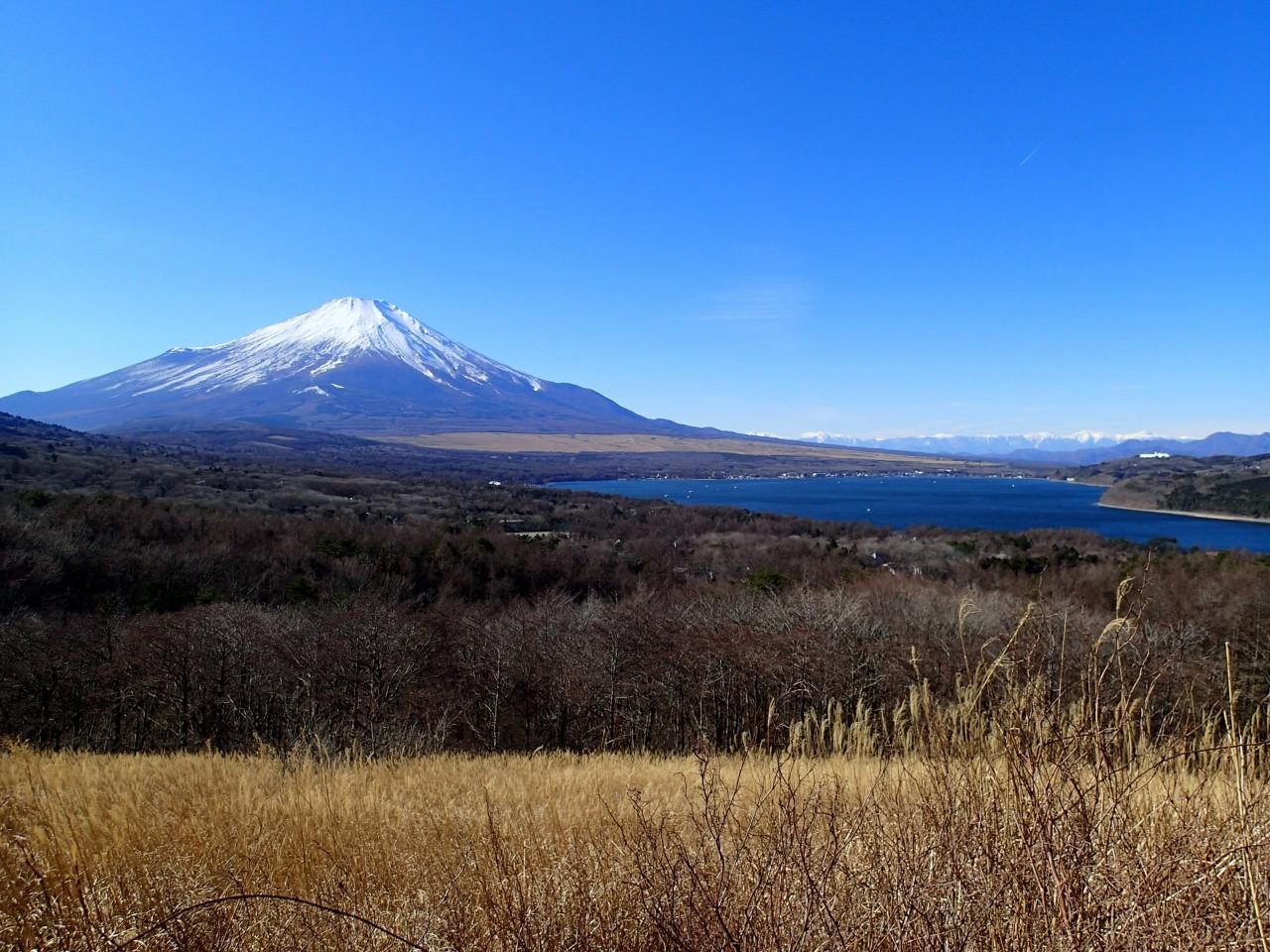 Hakone Kowakien to Hakone Yumoto Station Shared Transfer ( Cherry Tomato )
