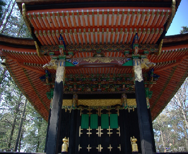 (1) 1-Day Nikko & Ninja Tour ( Nikko Toshugu Shrine / Edo Wonderland)   (2) Discount Pass to Nikko and Kinugawa Onsen