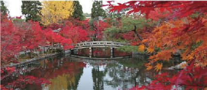 (1) Autumn Leaf Walking Tour in Higashiyama, Kyoto   (2) Kyoto Japanese Gardens Walking Tour