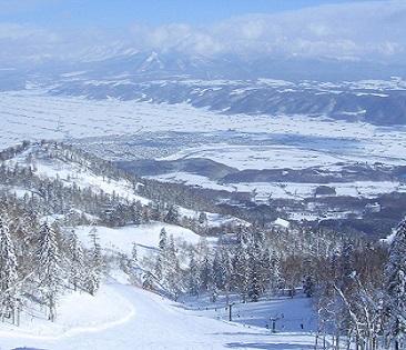 Furano Ski Resort to Chitose Airport Shared transfer ( Cherry Tomato ).