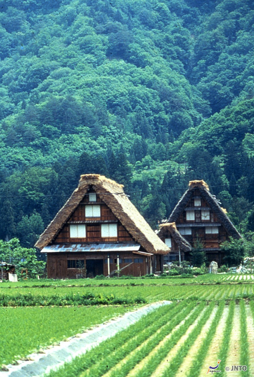 8-Day Japan Combination Package