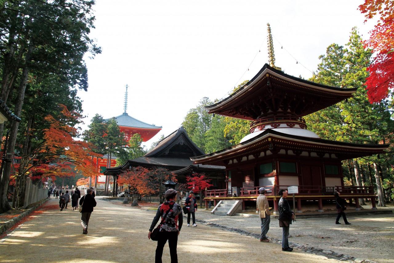 Optional SIC [From Osaka] (1) Koyasan 1-Day Package (without Guide)   (2) Koyasan 2-Day Train & Shukubo (Accommodation at Temple) Package (without Guide)