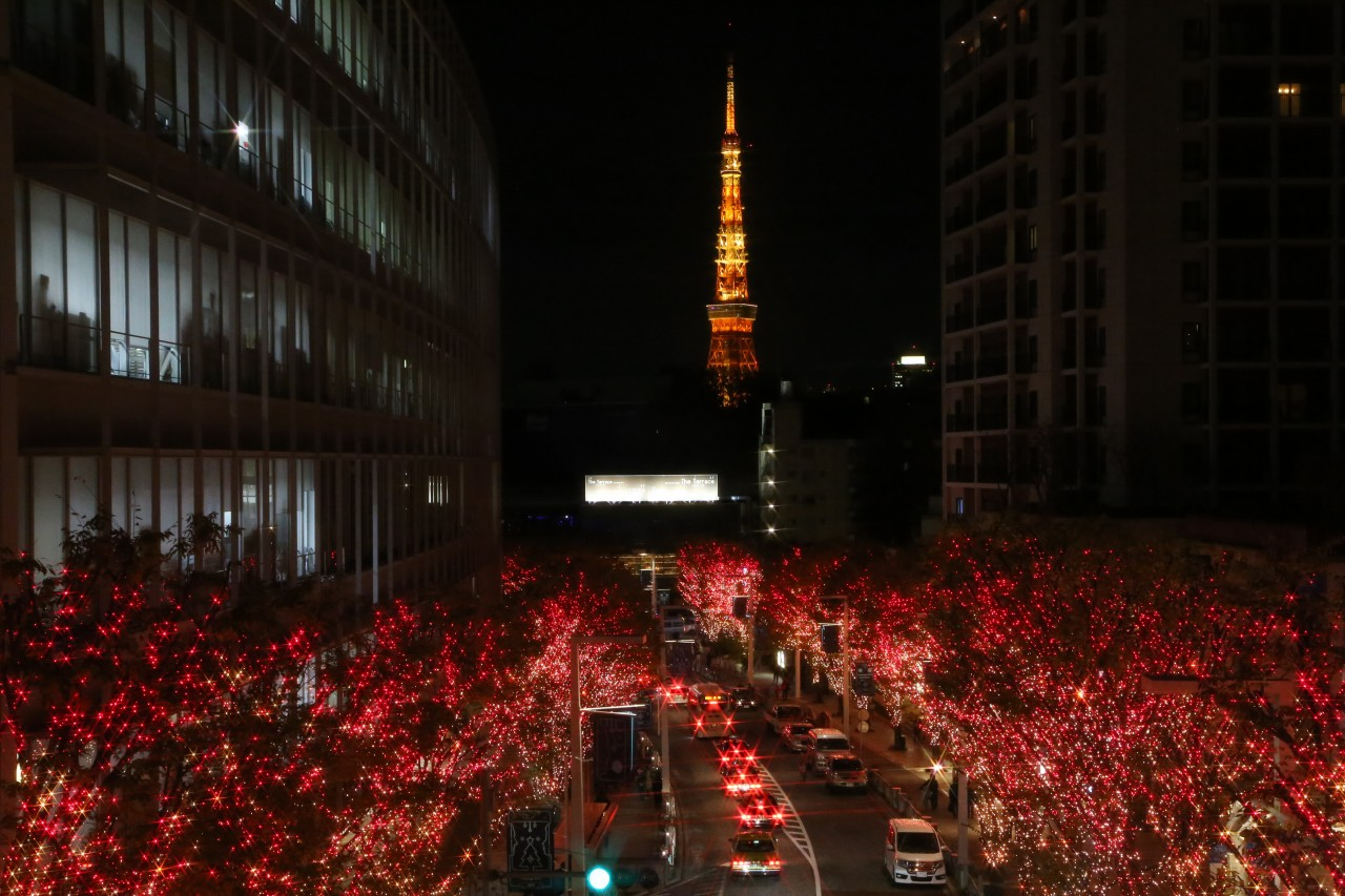 One Stop Transfer: Tokyo City to Roppongi Hills