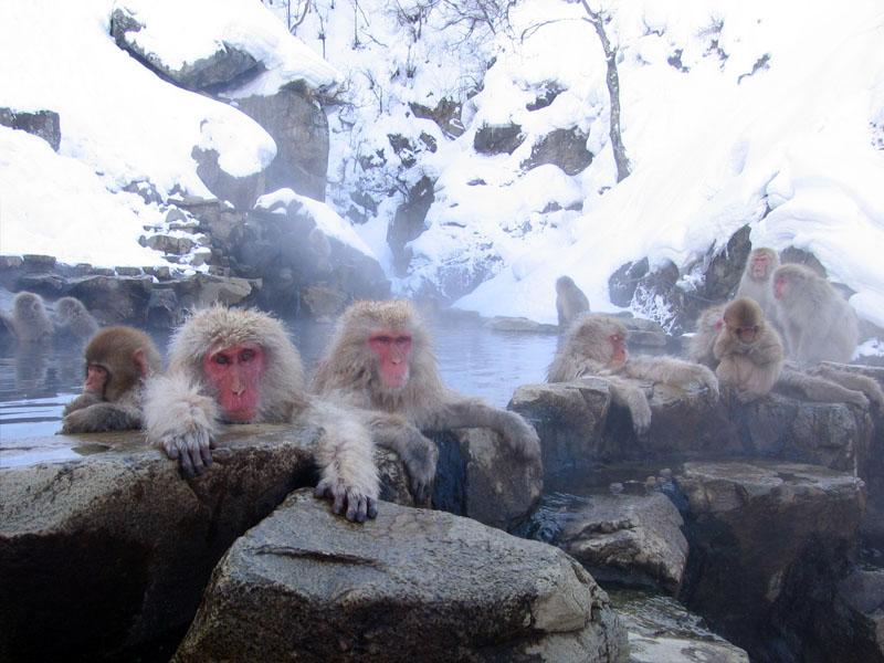 Nagano.Nagano City