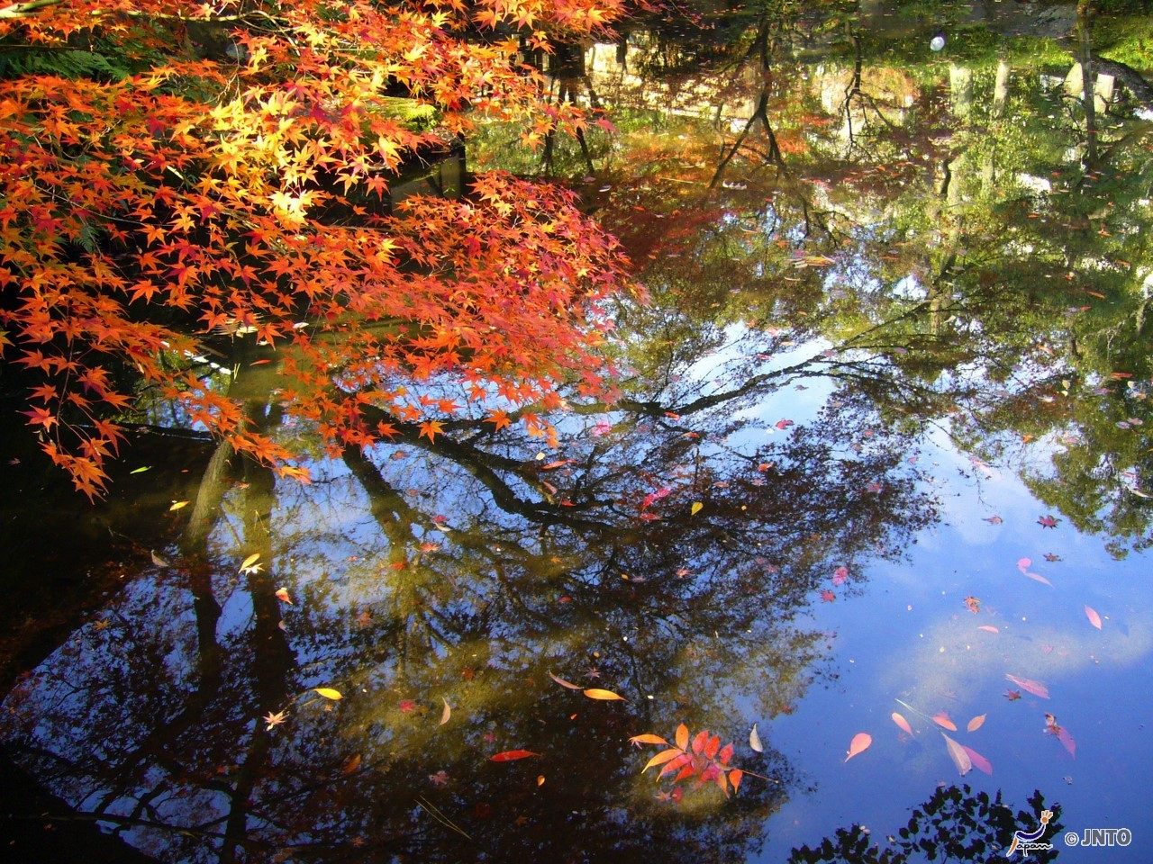 [G]S: Autumn Hoheikyo, Red Leaves Gondola and Exploring Otaru Tour (Excluding Multilingual Audio System)