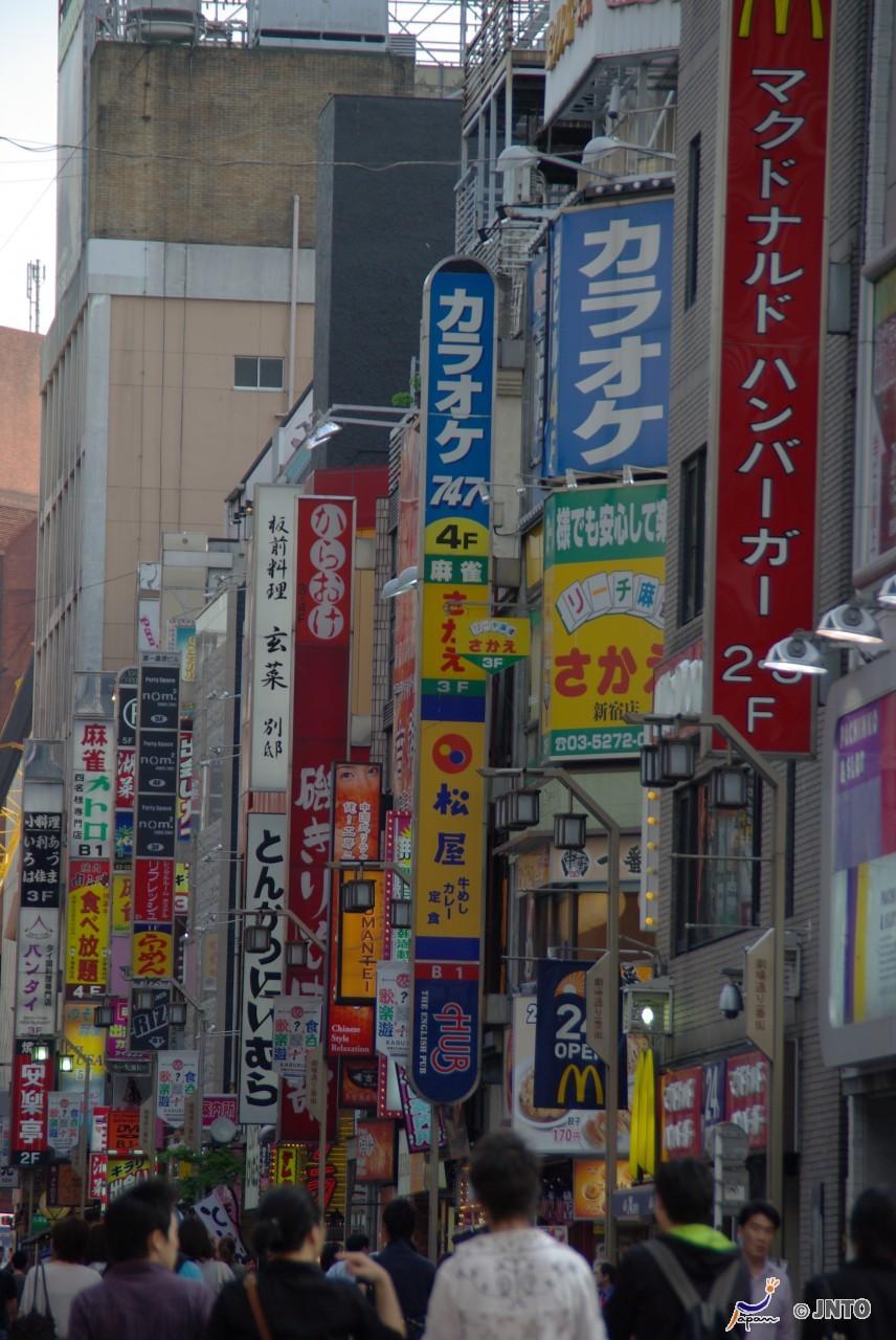 3D2N hostel (shared room) in Tokyo+ half day DAISUKI.Tokyo Tour(ALPHA MAGIC 9.0)