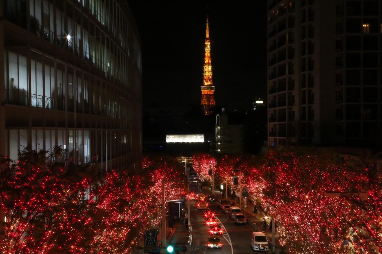 Narita Airport to Kokubunji City Shared Transfer ( Cherry Tomato )