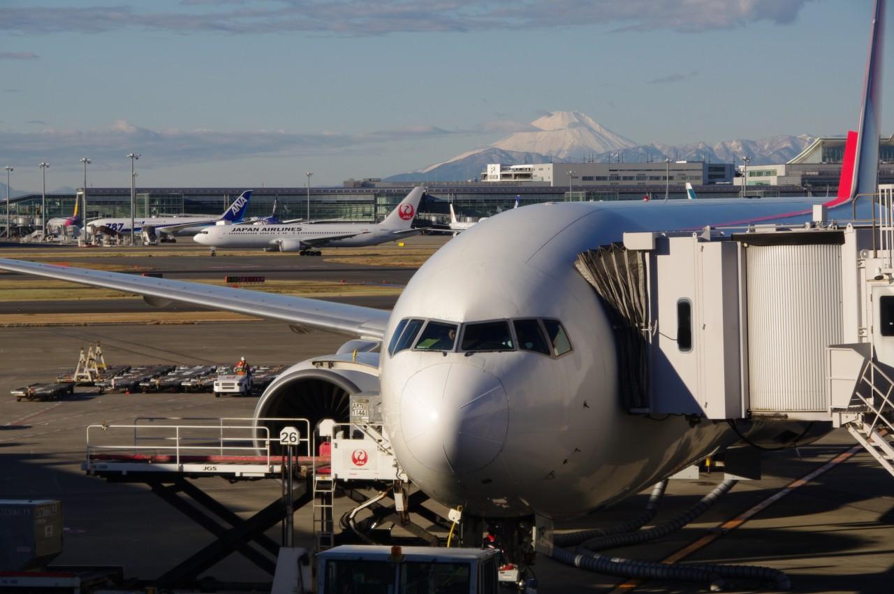 Haneda Airport to Mitaka City Shared Transfer ( Cherry Tomato )