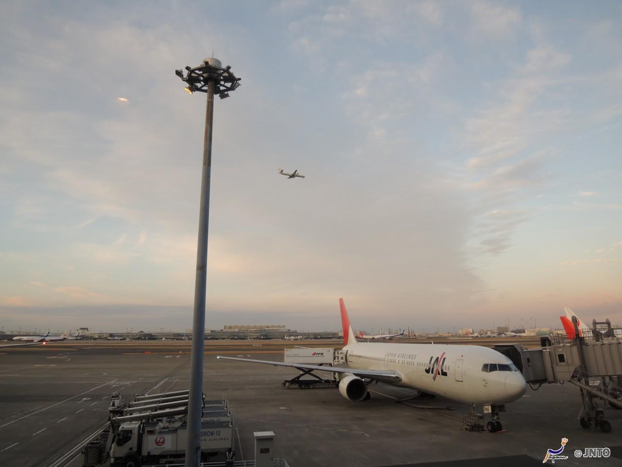 Haneda Airport to Higashiyamato City Shared Transfer ( Cherry Tomato )