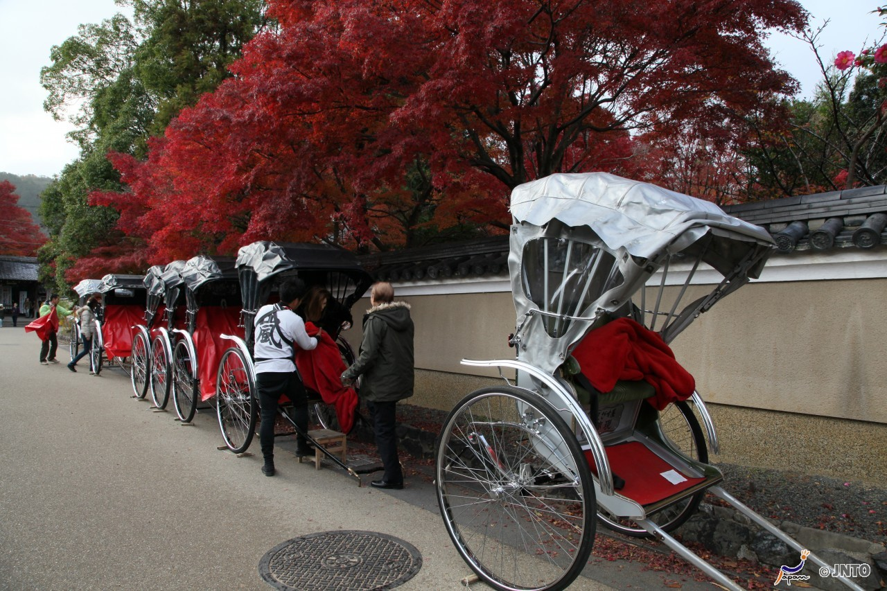 Kyoto City to Maizuru Port Shared Transfer ( Cherry Tomato )