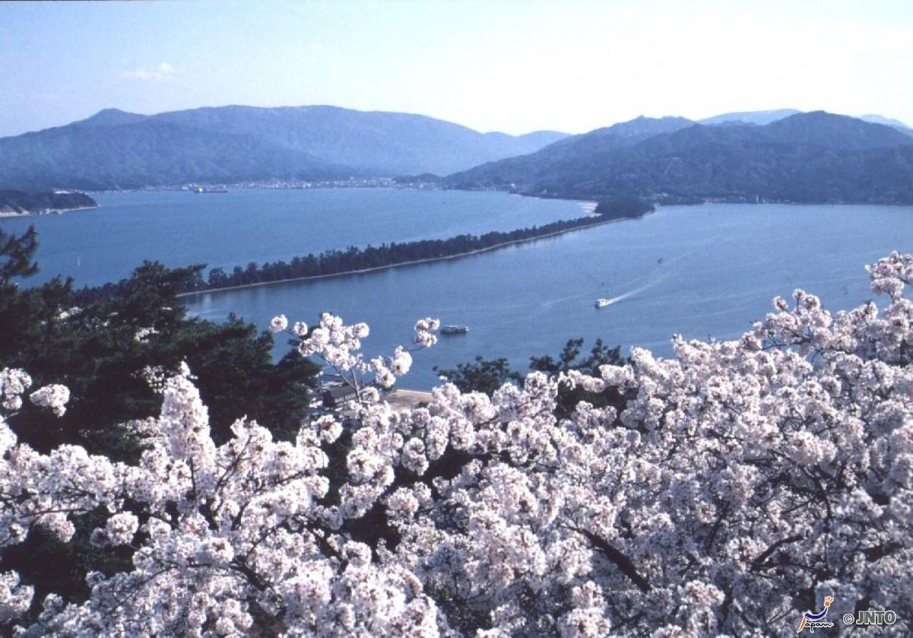 1Day     OSAKA – Amanohashidate – Funaya – Ine cho— OSAKA   < JONK01 > Alinobaby