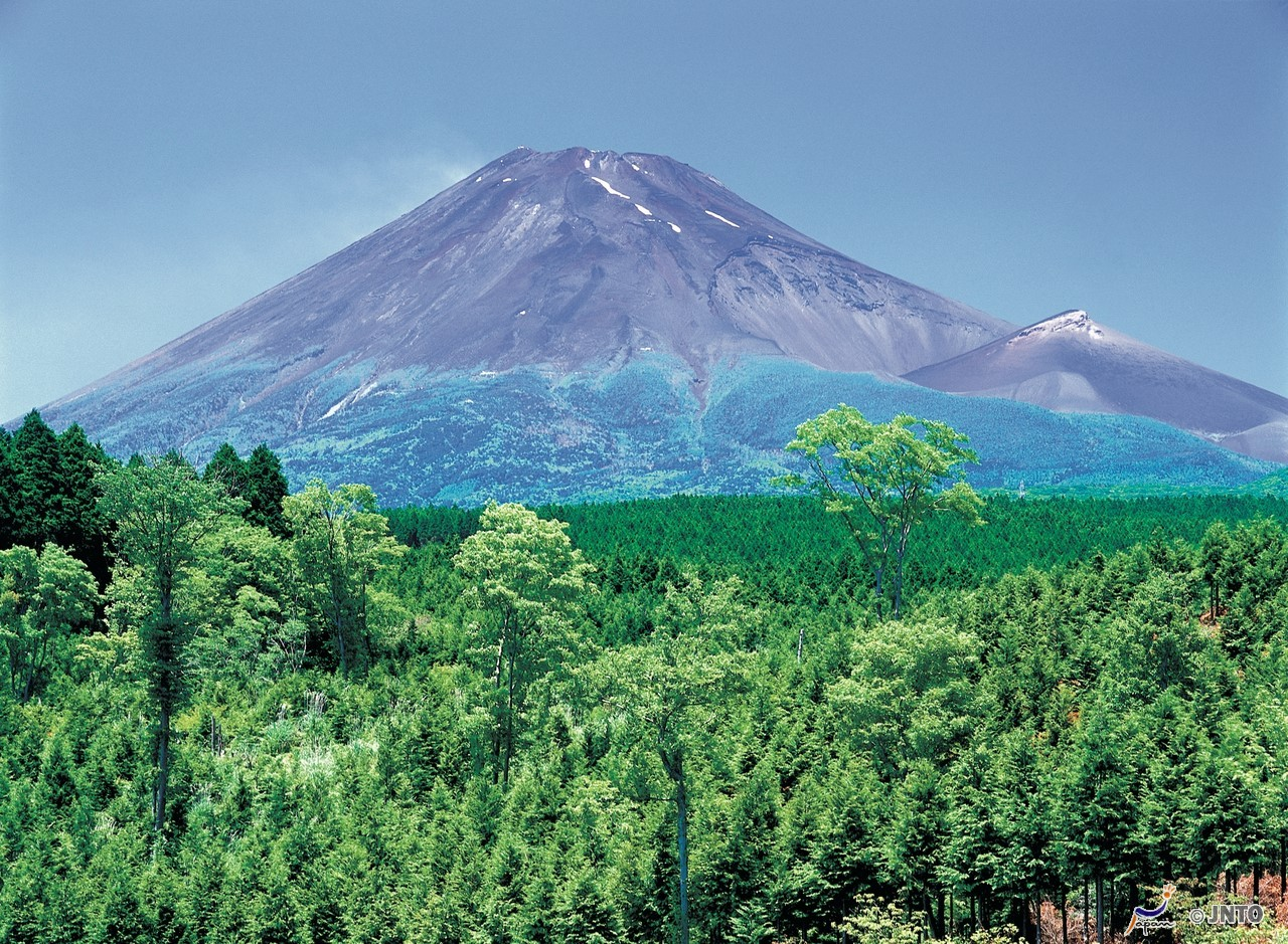 (1) 10% Discount! Mt. Fuji View Zip Line, Mishima Skywalk & Forest Adventure Special Set Ticket Plan   (2) Max 20% Discount! Hot Spring Theme Park: Hakone Kowakien Yunessun