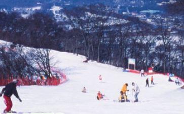 [1] 1-Day Karuizawa Prince Hotel Ski Resort Plan  [2] 2-Day Karuizawa Prince Hotel Accommodation Plan with 1-Day Ski Resort Lift Ticket [Round Trip From Tokyo]
