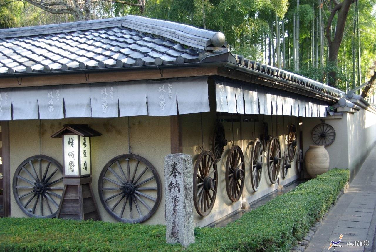 Sagano Bamboo Grove & Arashiyama Half Day Morning Walking Tour Plan [From Tokyo by Nozomi Bullet Train] *ALInoBABY
