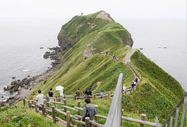 Hokkaido Chuo Bus – Scenic Shakotan Spring Tour