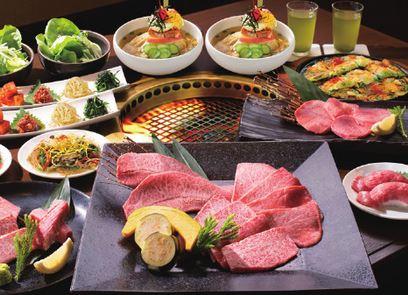 Premium Kuroge Wagyu Beef Yakiniku Course Meal Plan in Akihabara *ALInoBABY