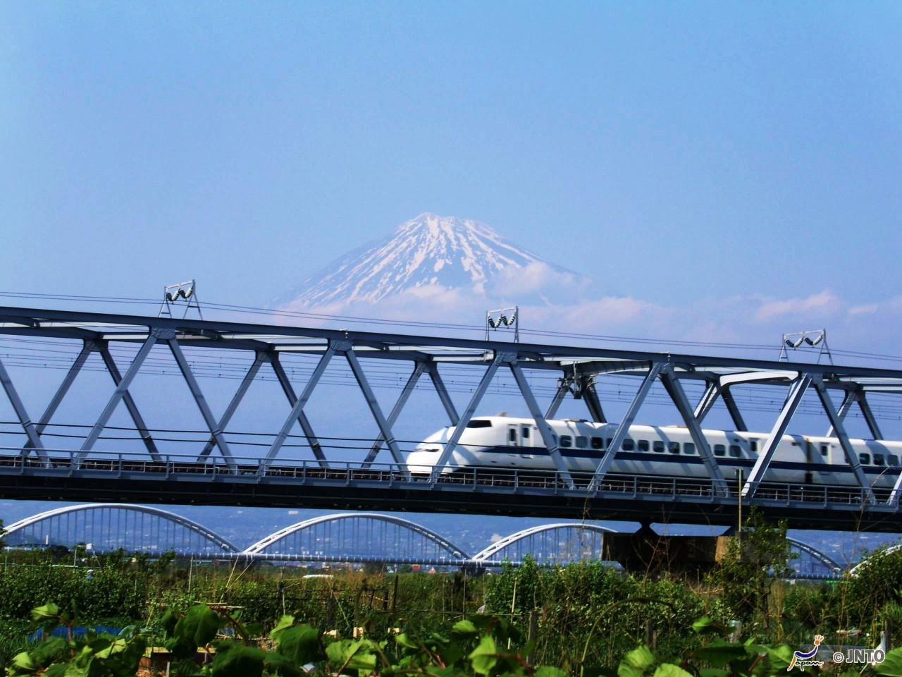 Kyoto Half-Day Morning Sightseeing Plan [From Tokyo by Nozomi Bullet Train] *ALInoBABY