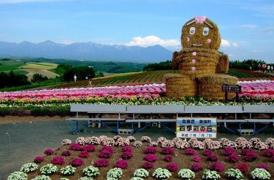 Hokkaido Chuo Bus -  Farm Tomita, Shikisai-no-Oka and Blue Pond Tour