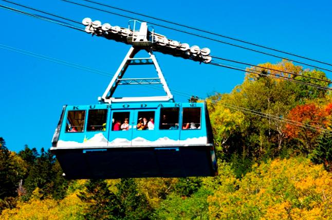 Hokkaido Chuo Bus - Mt. Kurodake Stroller and Sounkyo Gorge Spa Tour