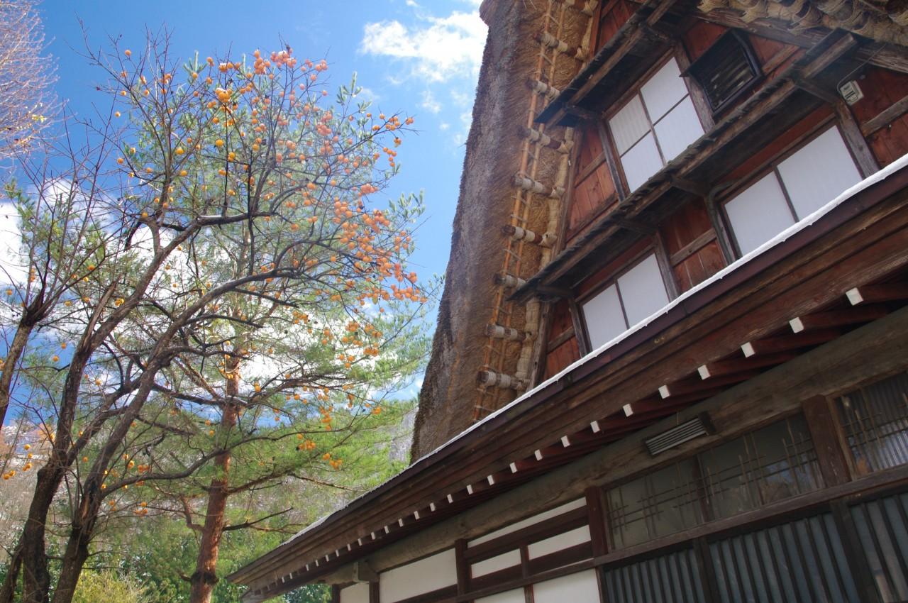 [By Bus Tour]3D2N. Budget Class.Kanazawa City.Lake Biwako.Hida Takayama, Shirakawa-go (From Osaka Back to Kyoto) **Wai Wai Real Japan