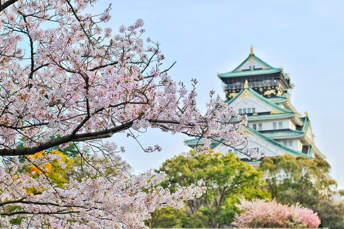 [By Bus Tour]8D7N. Economy Class. Osaka. Kanazawa.Shirakawa-go, Hida Takayama,Mt.Fuji 5th Station, Fuji-Q Highland,Lake Kawaguchiko, Tokyo (From Osaka back to Tokyo) **Wai Wai Real Japan