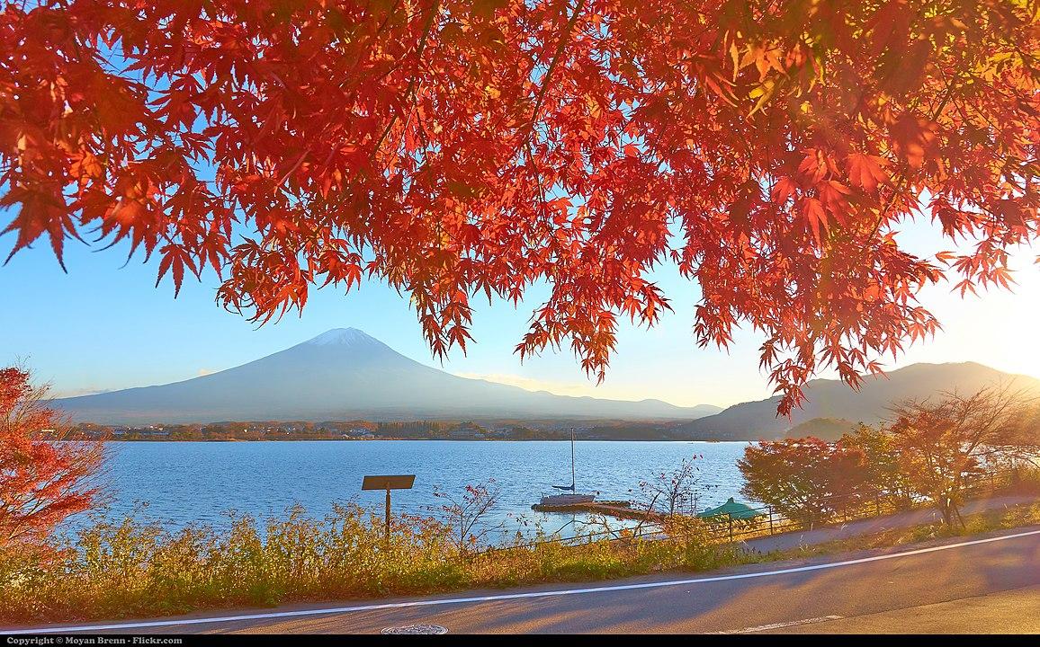 Yamanashi.Lake Kawaguchi
