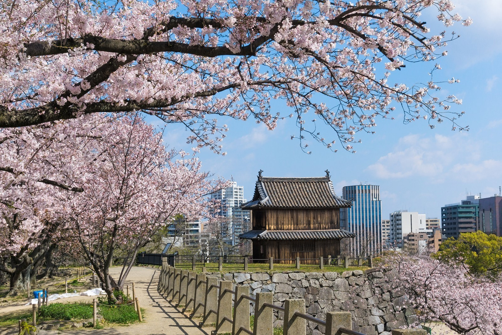 3D2N. Fukuoka.Economy.+ with half day DAISUKI.Fukuoka Tour **ALPHA MAGIC 20**