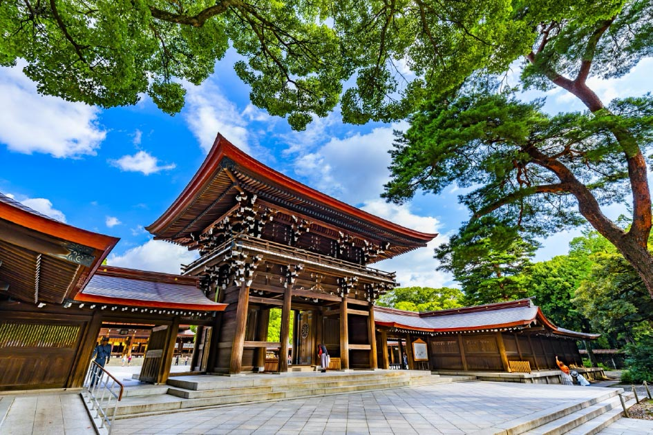 Ueno Park + Meiji Shrine with Round Trip Cherry Tomato SIC Door to Door Transfer (Duration: approx. 05-06Hrs)**ALInoBABY**