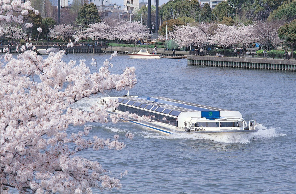Kema Sakuranomiya Park with Round Trip Cherry Tomato SIC Door to Door Transfer (Duration: approx. 02-03Hrs) **ALInoBABY**