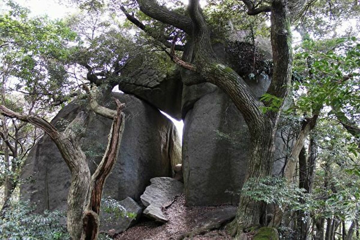 Kyoseki Giant Rock Park with Round Trip Cherry Tomato SIC Door to Door Transfer (Duration: approx. 04-05Hrs)**ALInoBABY**