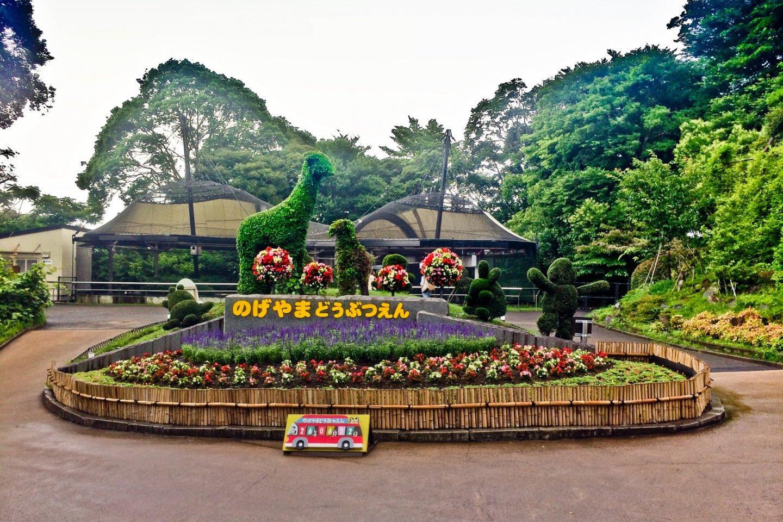 Nogeyama Zoo with Round Trip Cherry Tomato SIC Door to Door Transfer (Duration: approx. 02-03Hrs) **ALInoBABY**