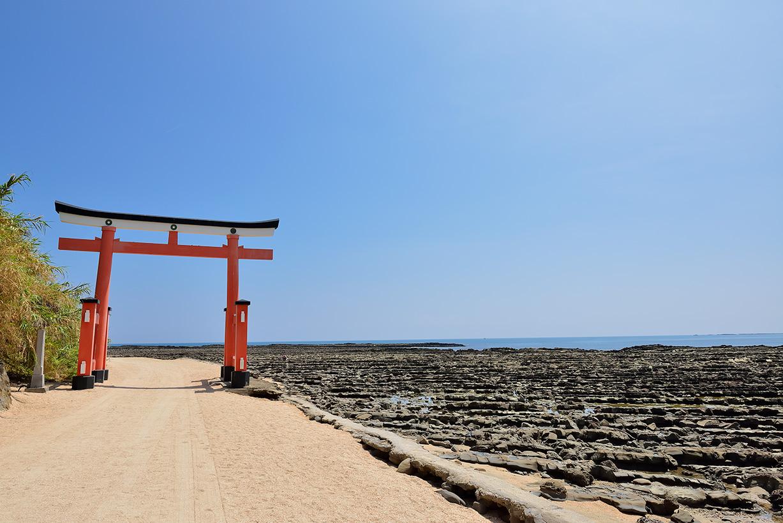 Aoshima Jinja Shrine with Round Trip Cherry Tomato SIC Door to Door Transfer (Duration: approx. 2.5-3.5Hrs)**ALInoBABY**
