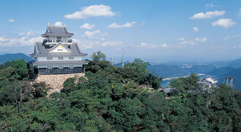 Gifu Castle with Round Trip Cherry Tomato SIC Door to Door Transfer (Duration: approx. 3.5-4.5Hrs)**ALInoBABY**
