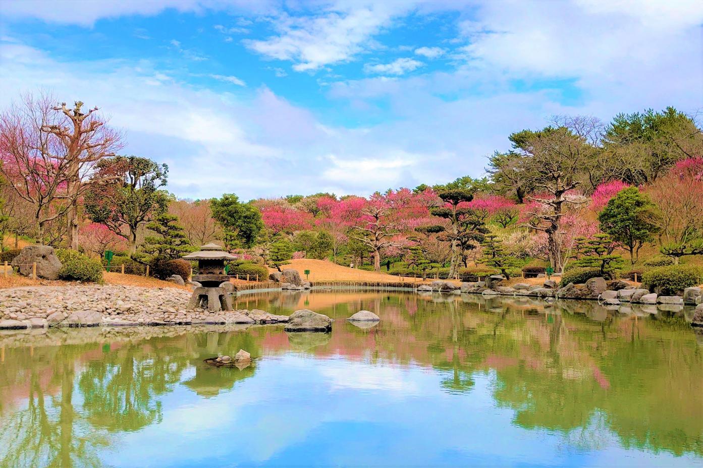 Yoshino Park Kagoshima with Round Trip Cherry Tomato SIC Door to Door Transfer (Duration: approx. 02-03Hrs)**ALInoBABY**